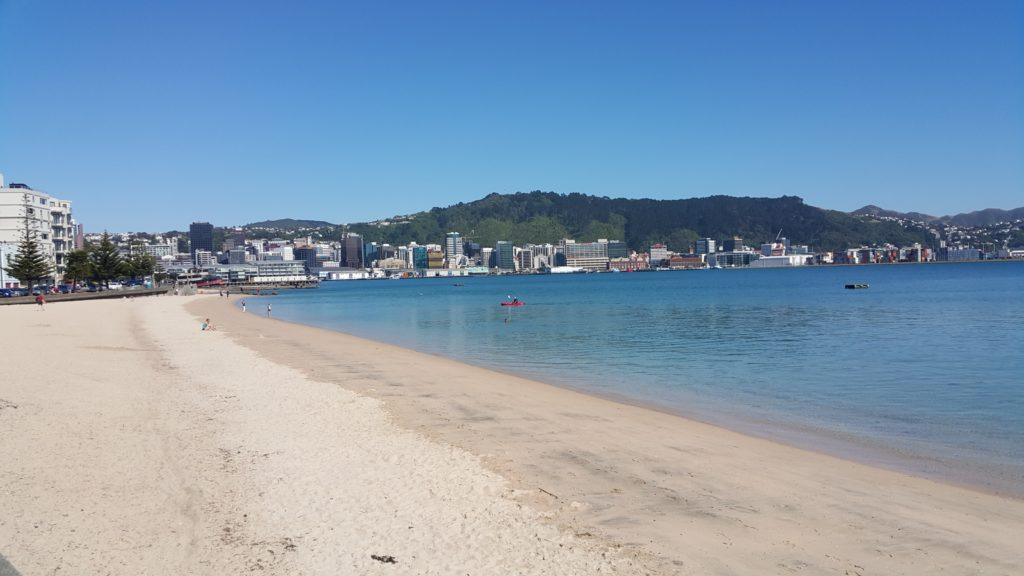 ニュージーランド ウェリントン 街中のビーチ