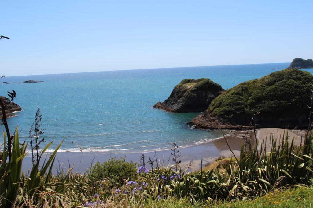 ニュージーランド北島 ニュープリマス