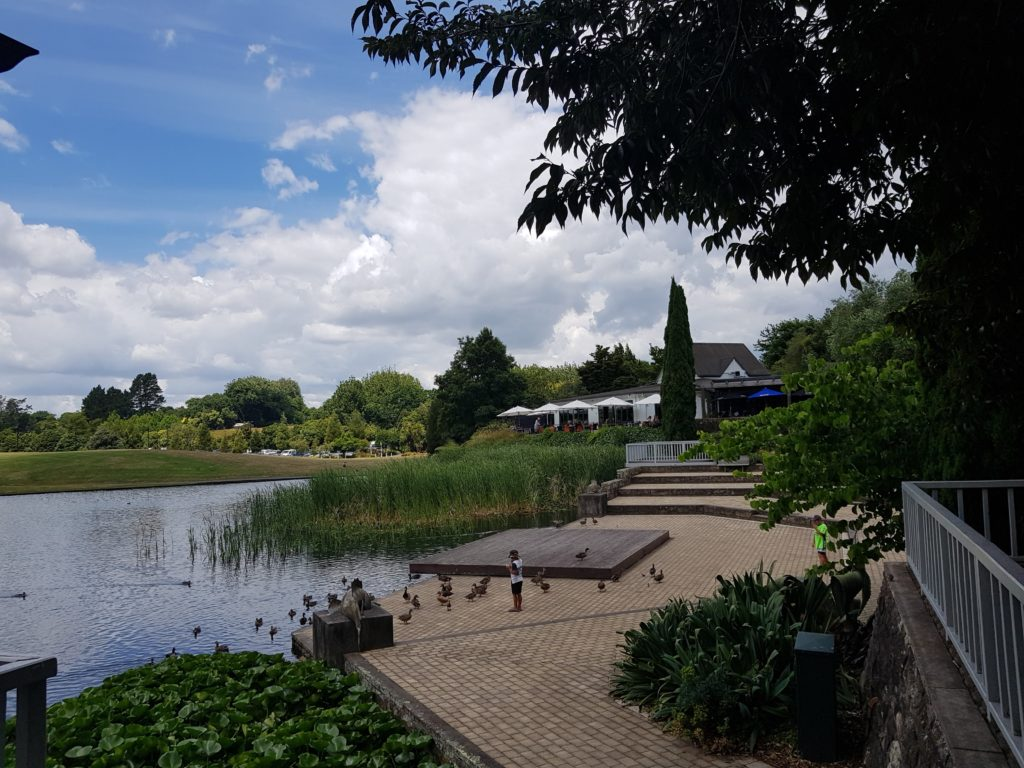 ハミルトンガーデン タートル湖