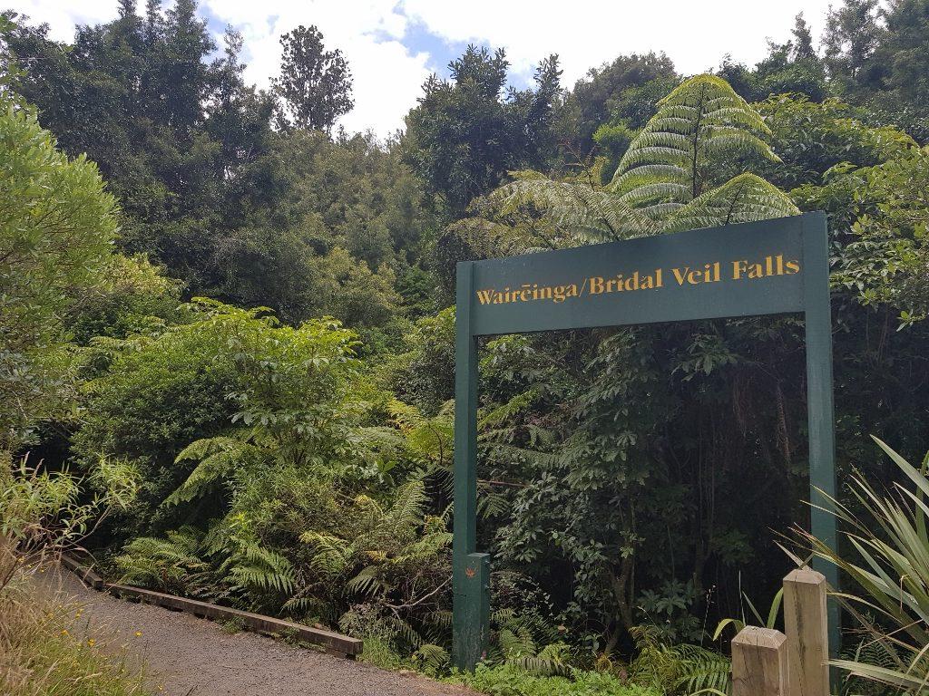 ニュージーランド ワイカト ラグラン 花嫁のベール滝 入口