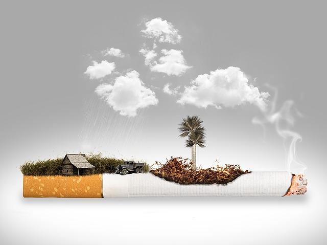 ニュージーランドたばこ値段