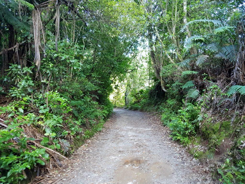 ニュージーランド ロトルア 滝