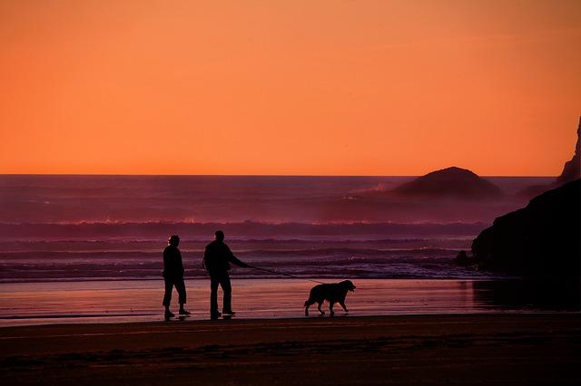 ニュージーランドで老後を過ごすのに適した街
